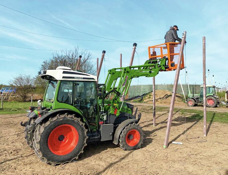 Fendt e100 Vario mit Frontlader und Arbeitskorb beim Aufbau von Pfählen für den Obstbau