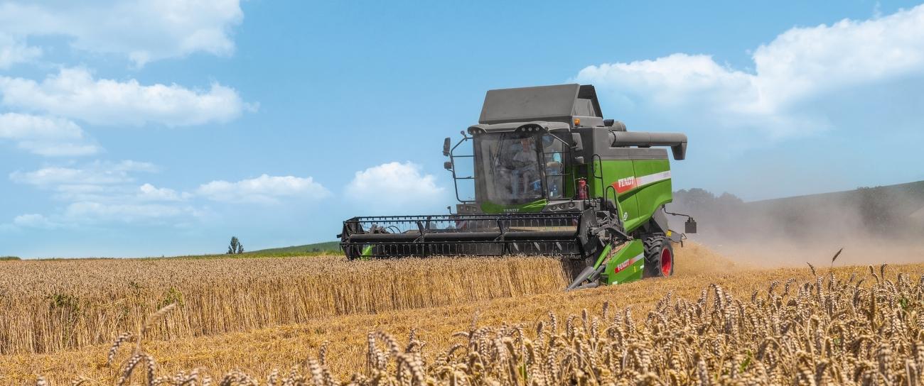 Fendt L-Serie Mähdrescher fährt auf einem Weizenfeld.
