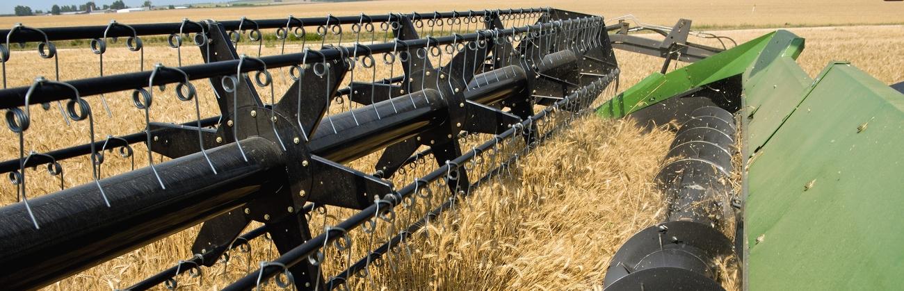 Nahaufnahme Schneidwerk des Fendt L-Serie Mähdrescher während der Ernte auf einem Weizenfeld.